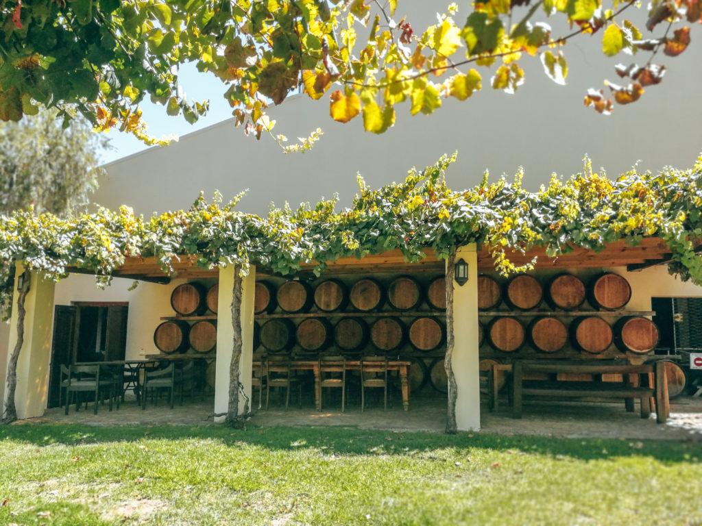 Weingut Stellenbosch
