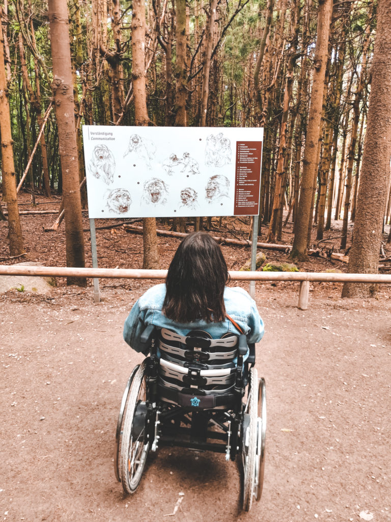 Rollstuhl am Bodensee