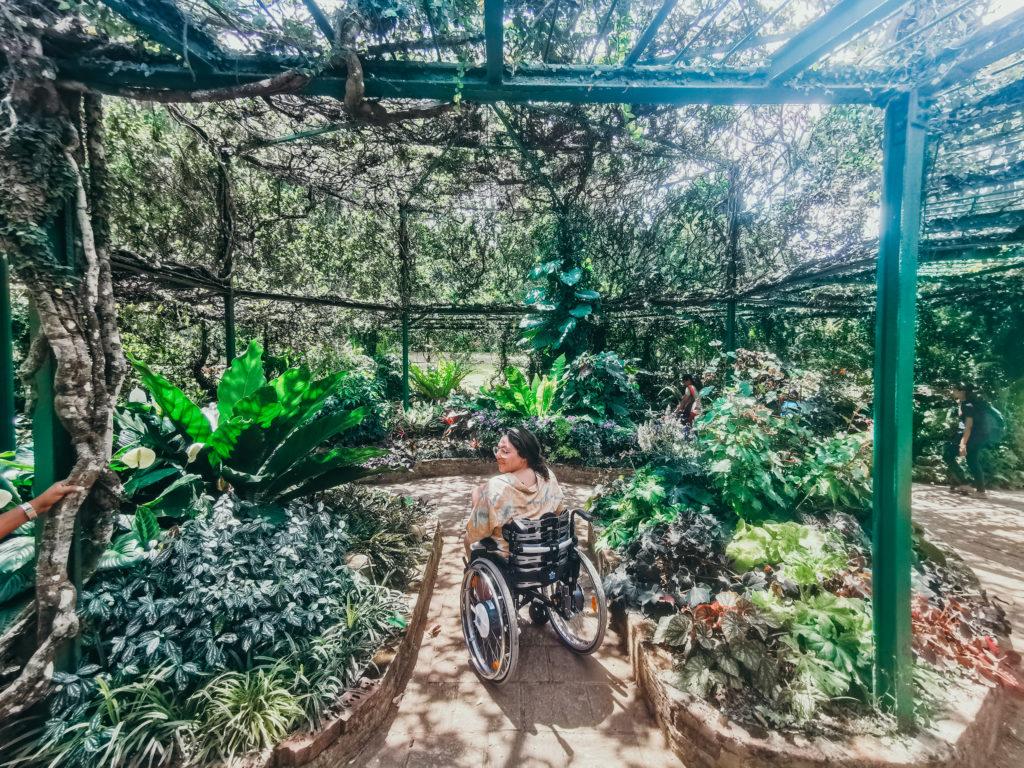 Botanischer Garten Sri Lanka