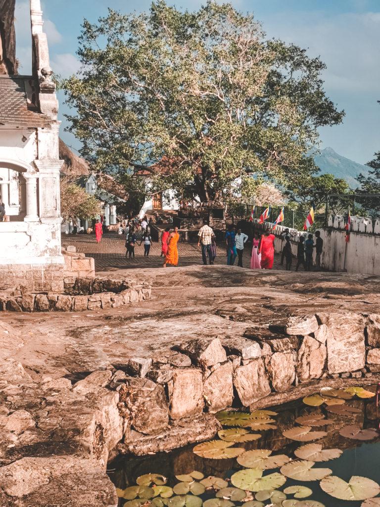 Royal Cave Tempel